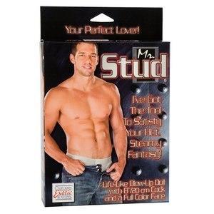 Кукла мужчина Mr. Stud